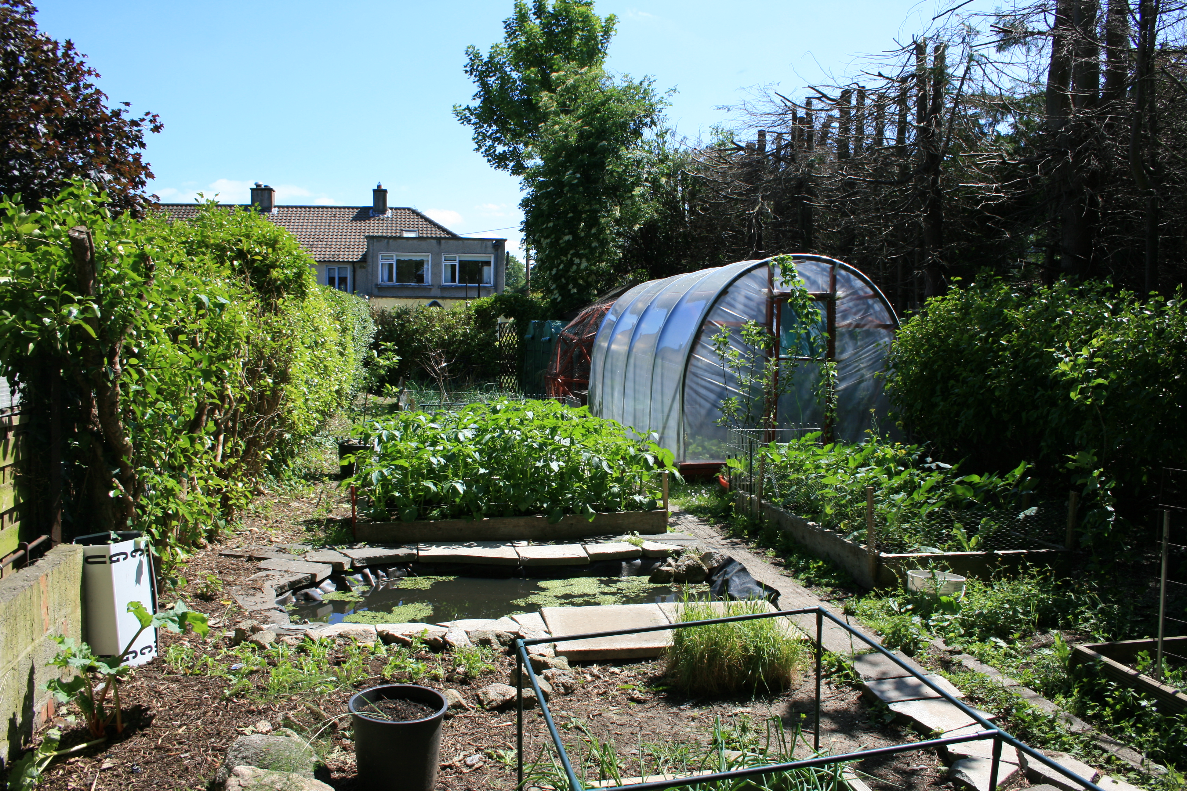 How To Make Your Own Polytunnel Gardening Amp Permaculture