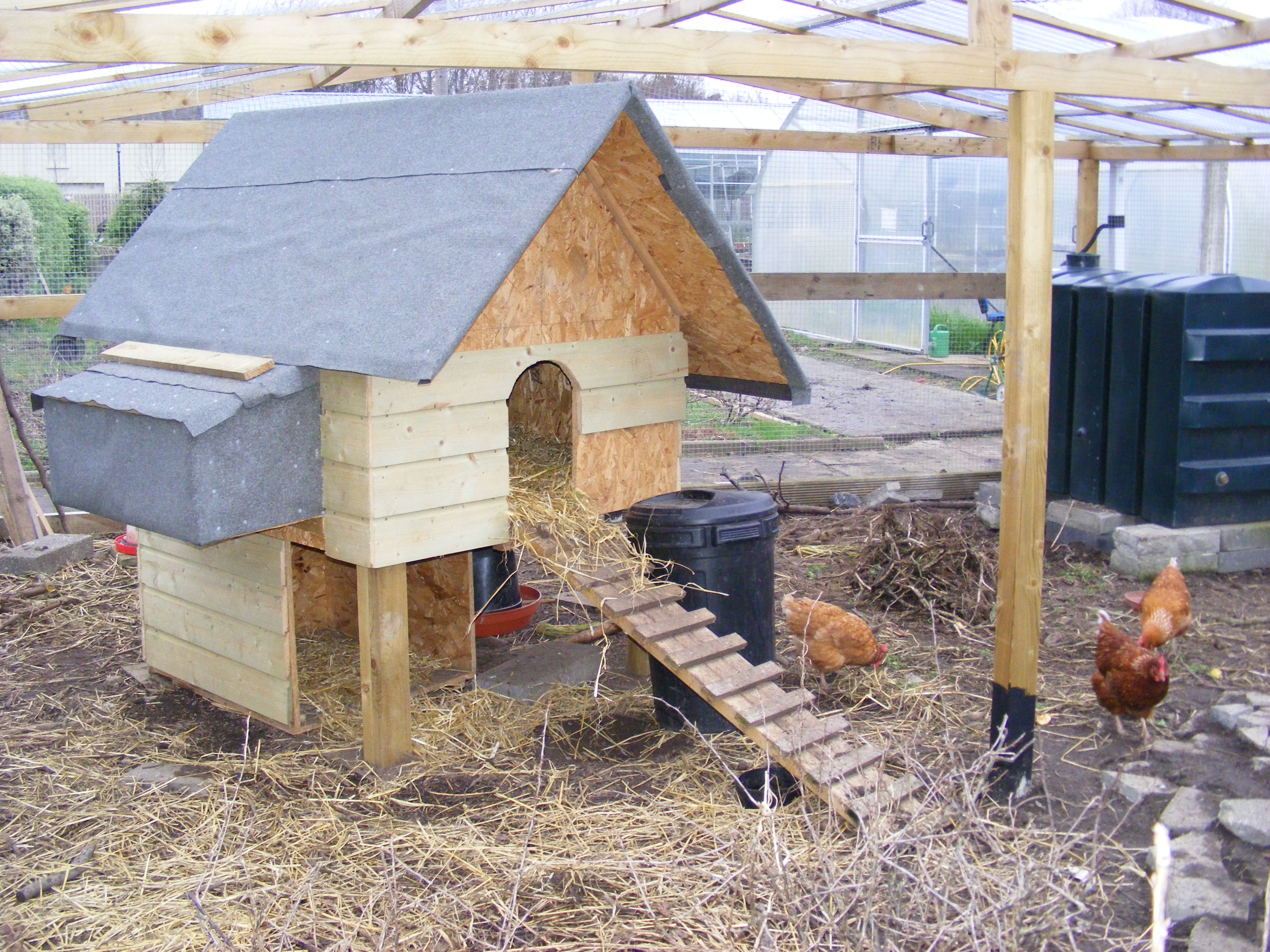 Winter gardening permaculture design for Winter duck house