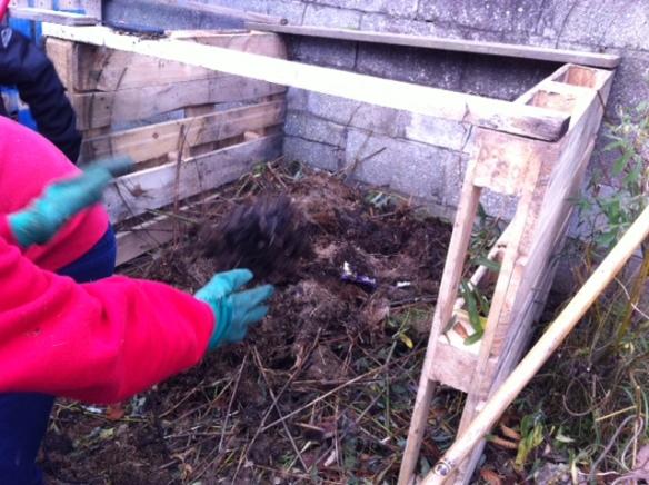 compost (3).JPG